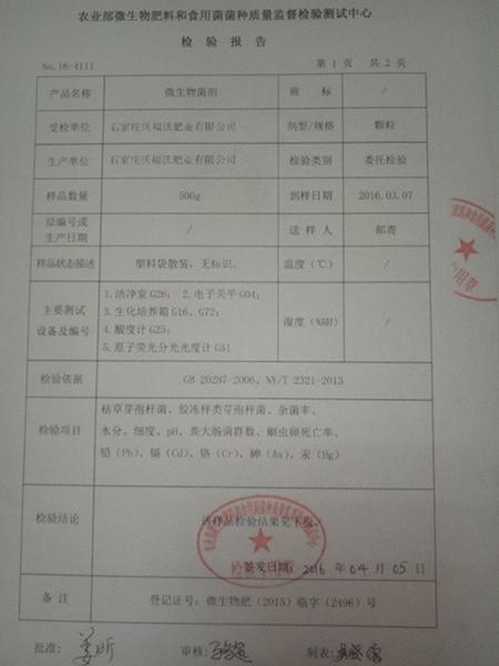 微生物菌剂检验报告2